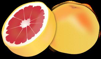grapefruit-hi