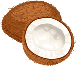 coconut_PNG9162