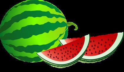 Watermelon-clip-art-border-free-clipart-images-4